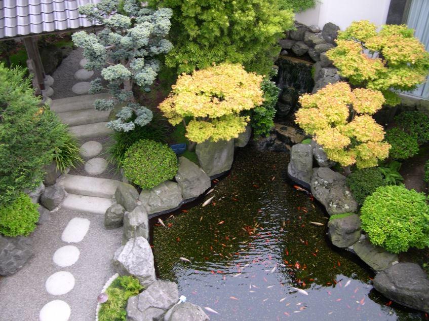 Jardines orientales fotos
