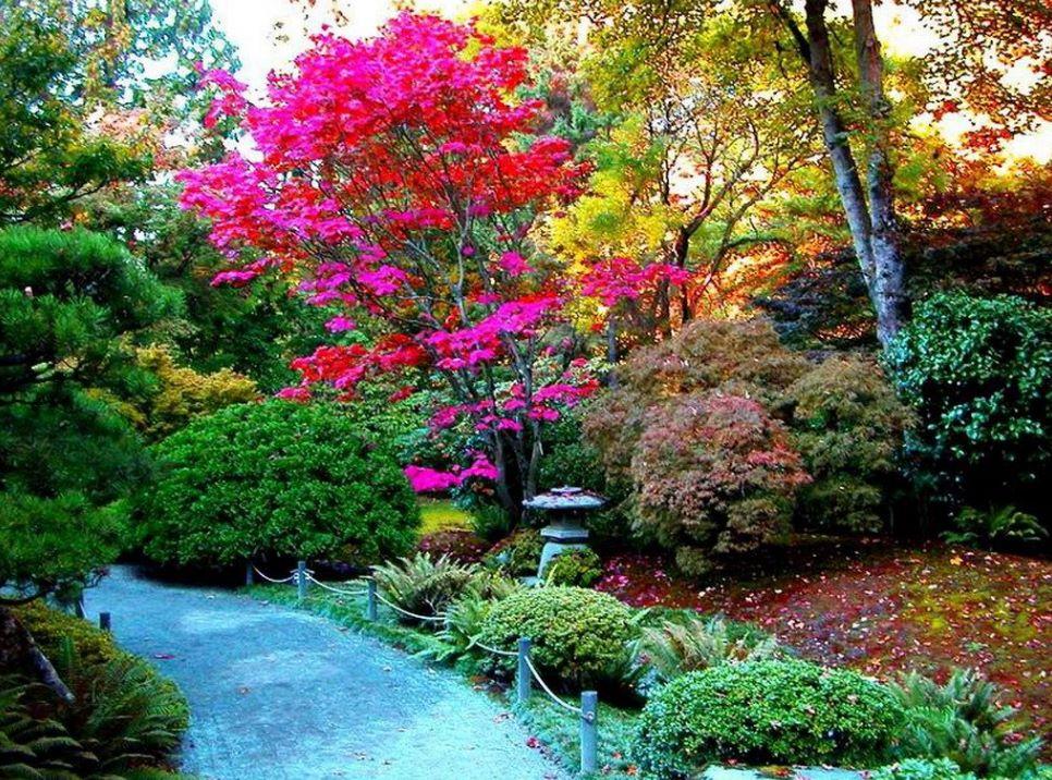 imagenes-de-jardines-su-decoracion