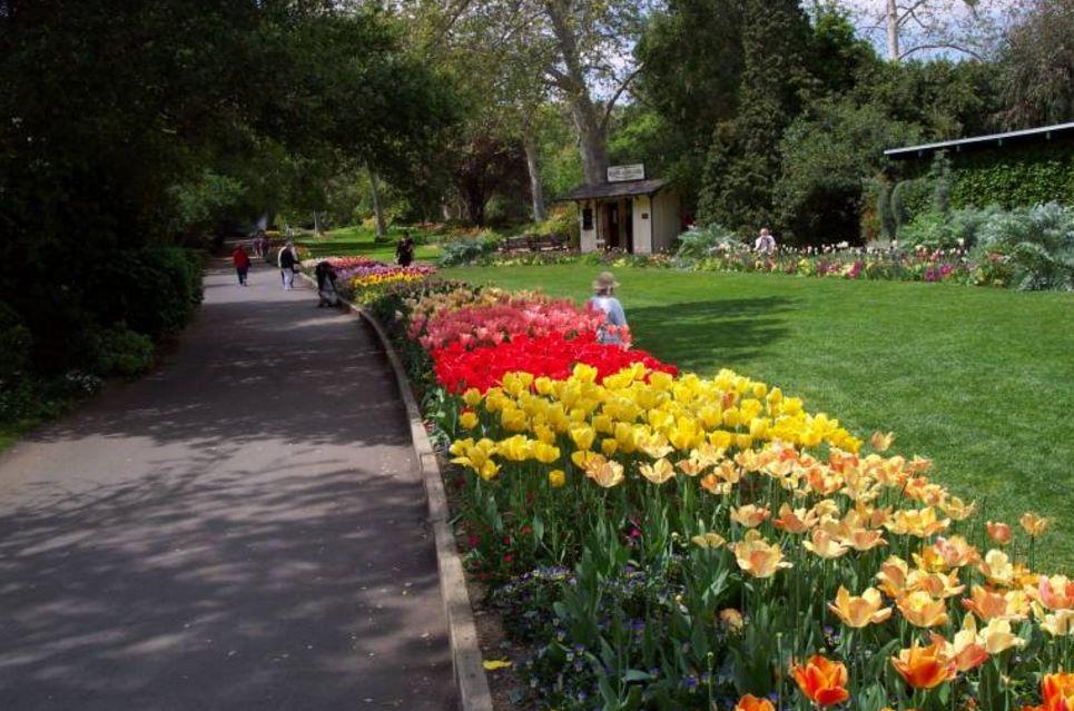 fotos-de-jardines-su-decoracion