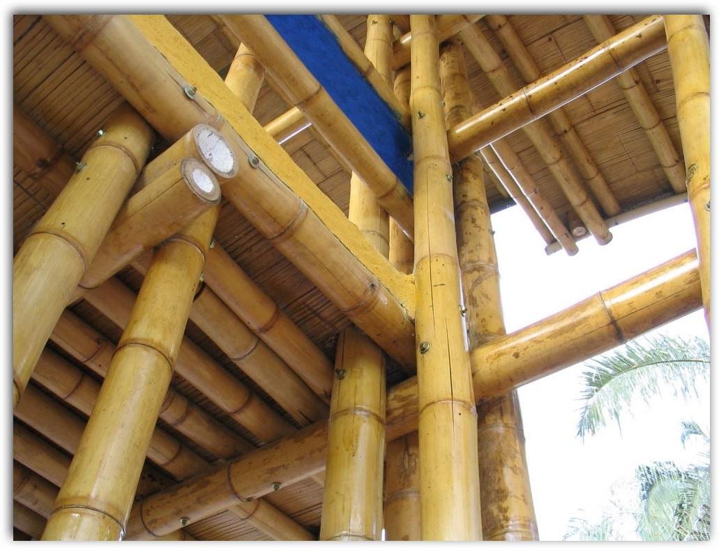 casas-de-bambu
