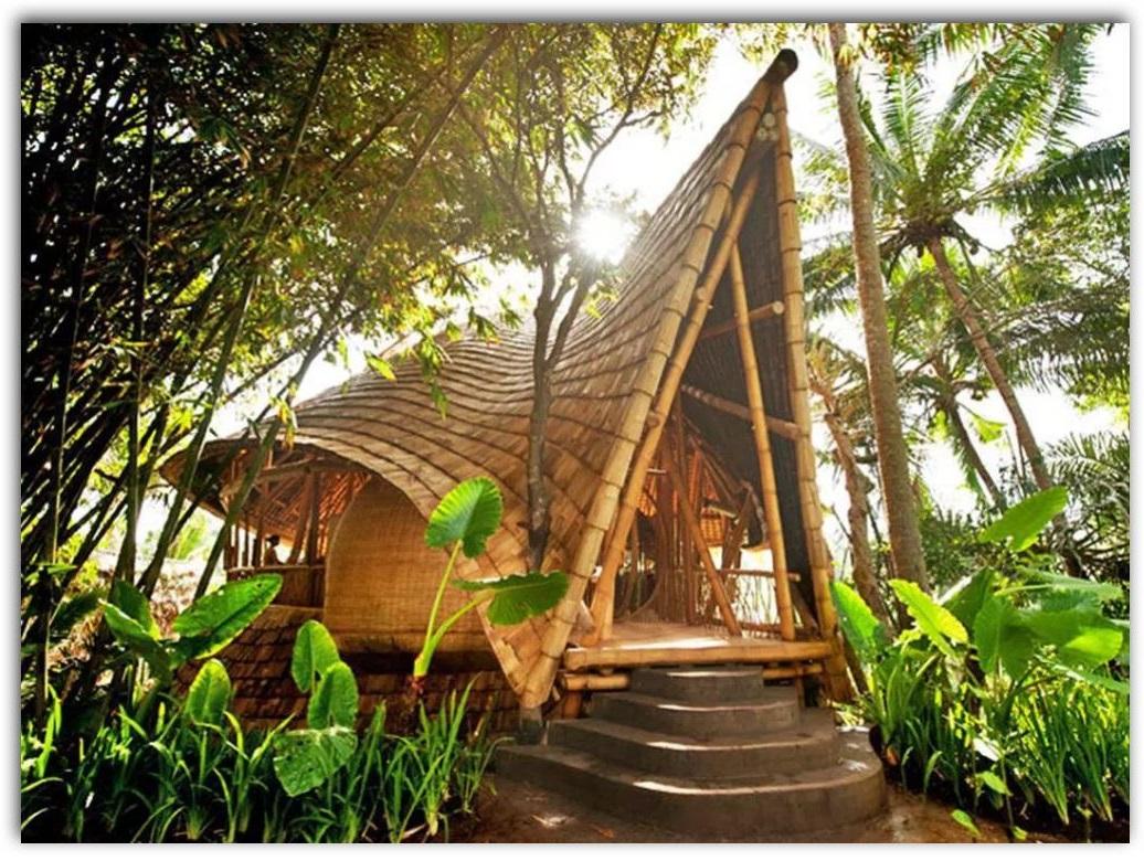 Casas de bamb - Como crear tu casa ...