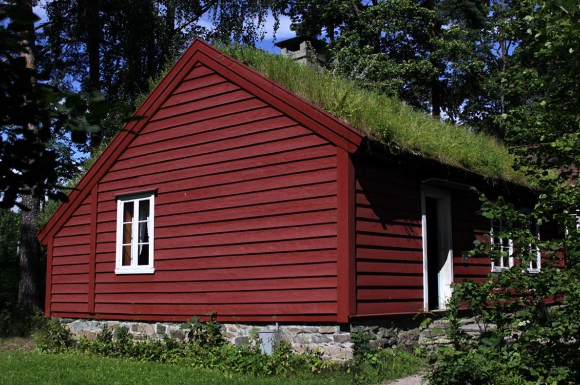 Casas con techos vivos